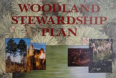 Woodland Stewardship binder cover