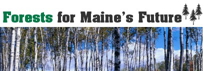 Forests for Maine's Future banner excerpt