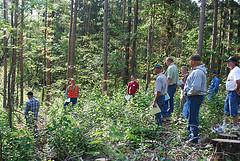 Woodland Advisor workshop